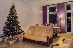 Salon choinka apartament
